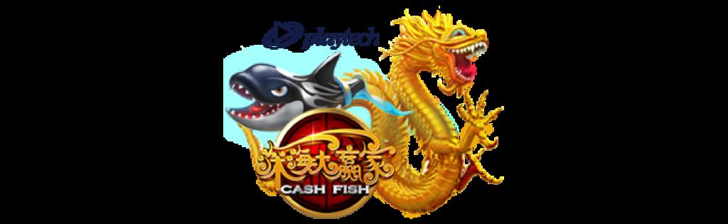 pt fish - cash fish