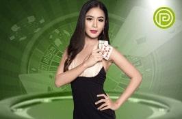 Gameplay Live Casino