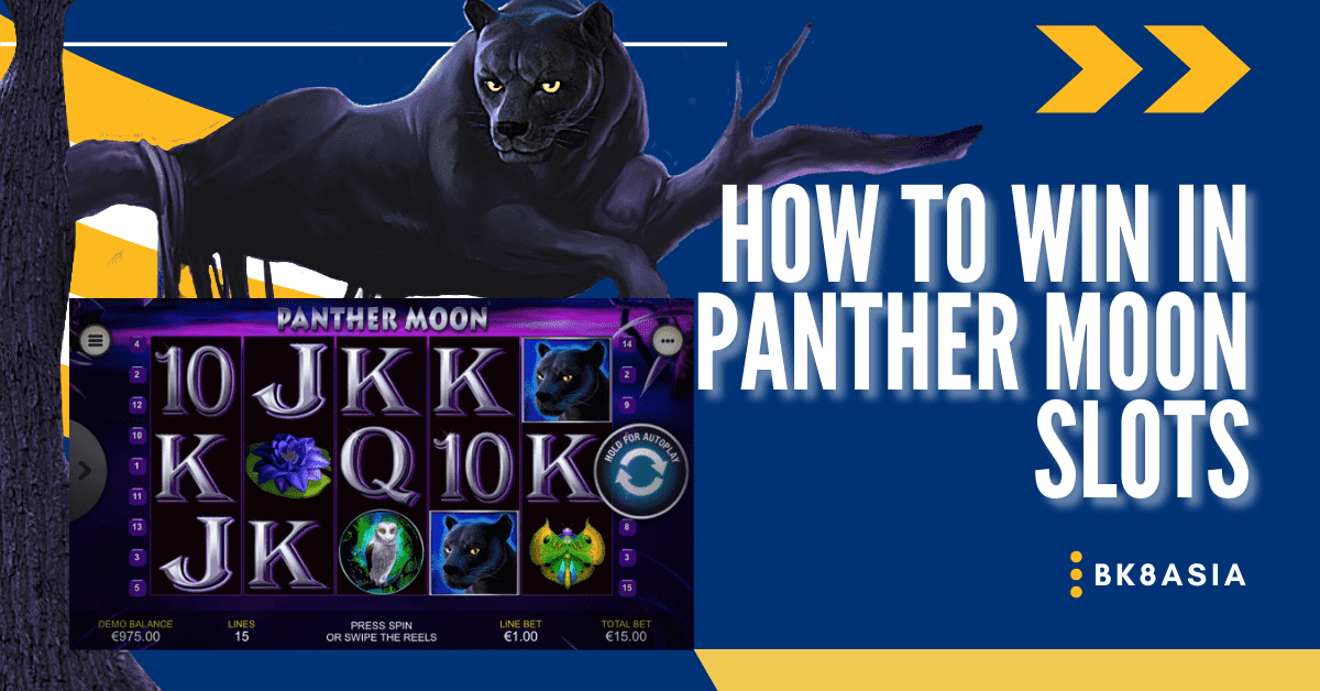 How To Win In Panther Moon Slots