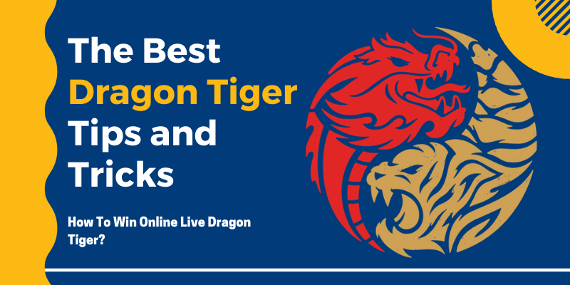 The Best Dragon Tiger Tips and Tricks